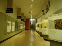 A hallway in MIT's library.