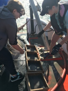 sifting through ocean mud (part i)