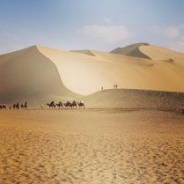 the gobi desert!