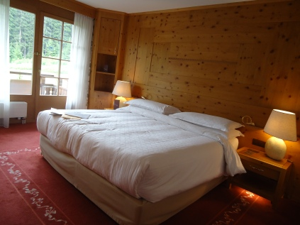 We stayed at a nice hotel (Sheraton Davos Hotel Waldhuus). Looking outside, you could see the mountains & hiking trails.